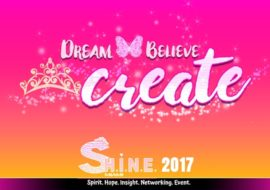 S.H.I.N.E. 2017: 3rd Annual Networking Event, Botaniko Weston