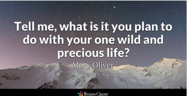 Tell Me, What is it that you plan to do with your one wild and precious life?